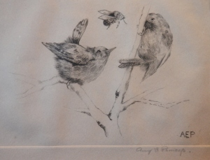 Birds and a Bee signed AEP - Amy E P?