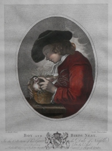 Boy and Birds Nest etching by Caroline Watson after B Murillo @1781
