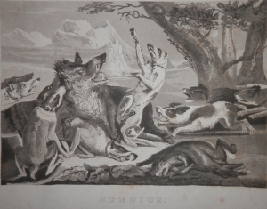 Death of a Wild Boar aquatint with etching after Hendrik Hondius