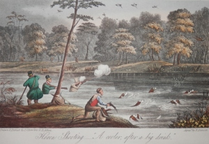 Heron Shooting - A Cooler after a big Drink' drawn and etched by Rawlins & Alken with aquatint by E. Duncan @ 1835