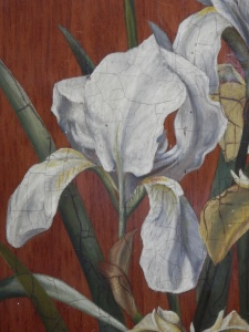 Iris 3 unknown artist @ 1890