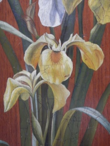 Iris 4 unknown artist @ 1890